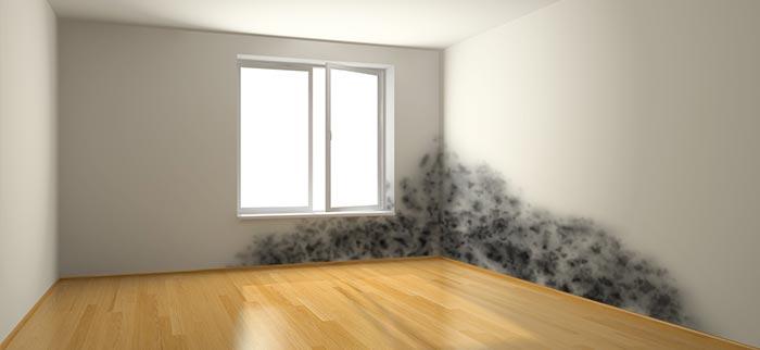 bas ratgeber zur abdichtung und trockenlegung beratung tipps. Black Bedroom Furniture Sets. Home Design Ideas